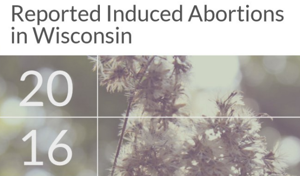 Report: Abortions performed in Wisconsin decline again