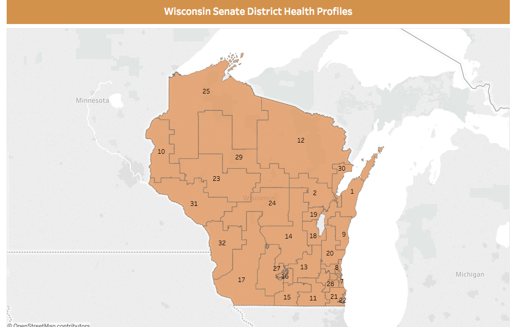 Maps detail health of Wisconsin's legislative districts