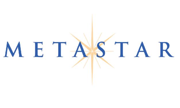 MetaStar names Wang next CEO